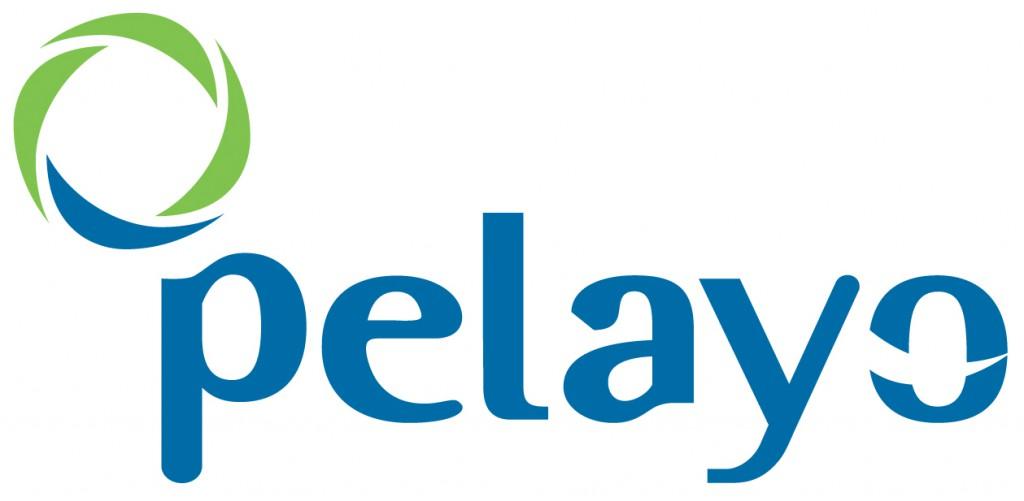 pelayo_seguros